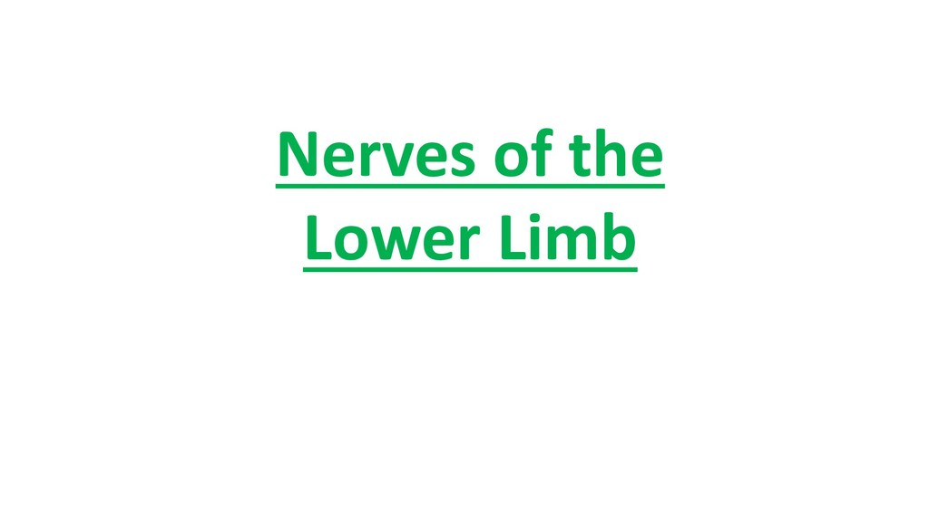 Nerves of the Lower Limb