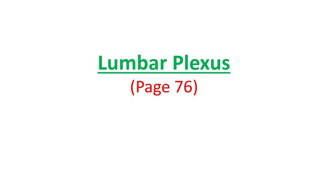 Lumbar Plexus (Page 76)