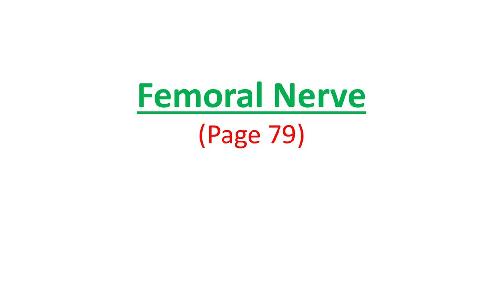 Femoral Nerve (Page 79)