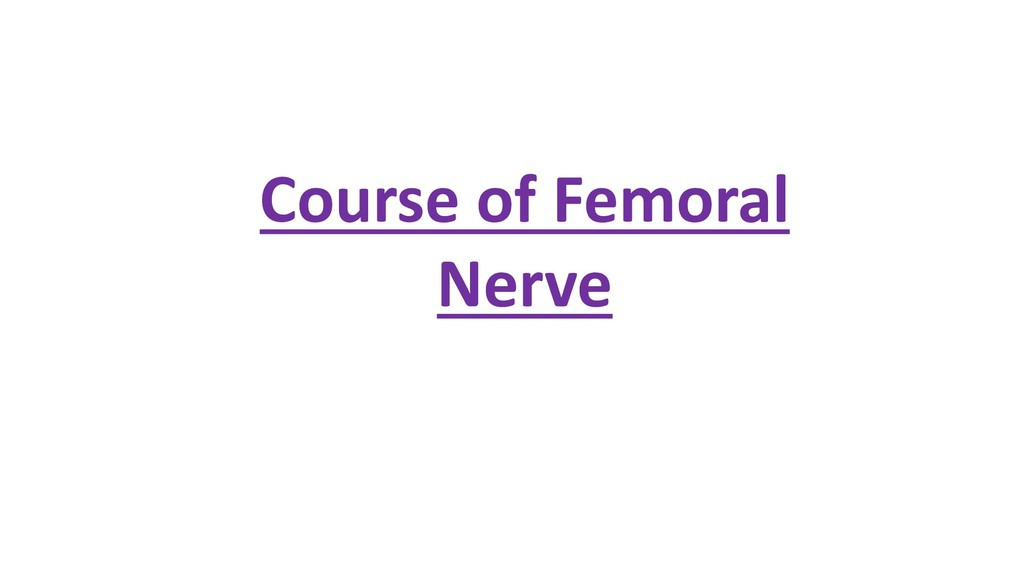 Course of Femoral Nerve