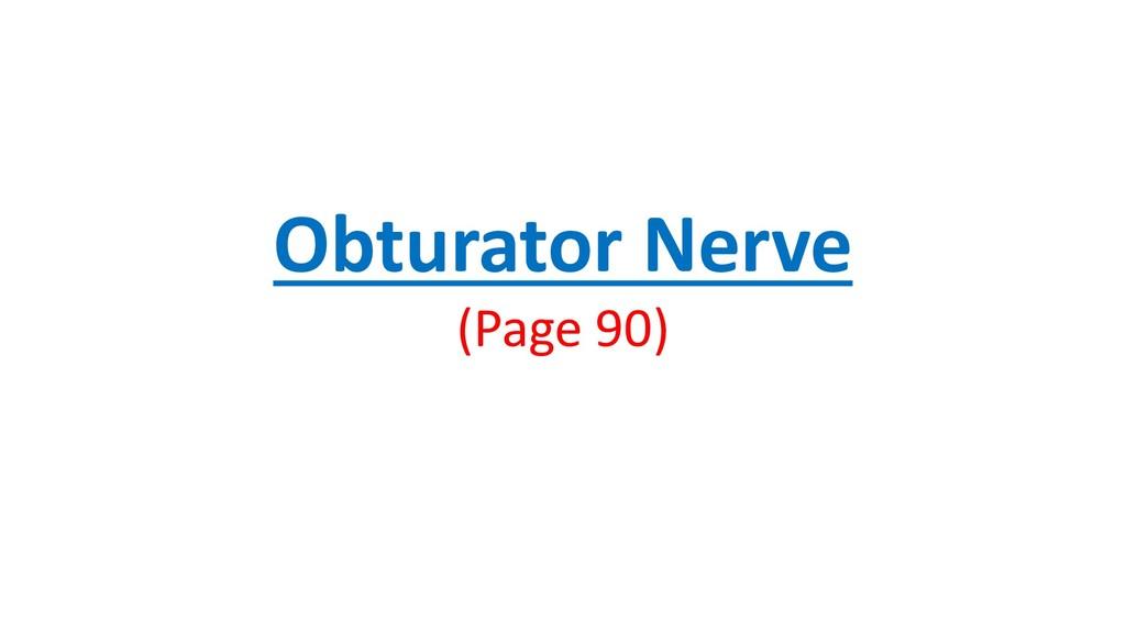 Obturator Nerve (Page 90)