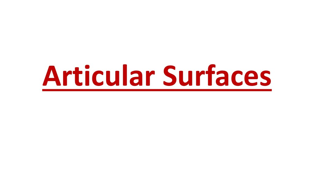 Articular Surfaces