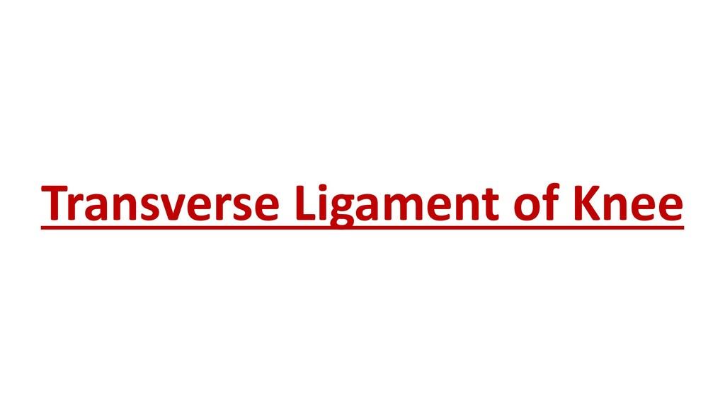 Transverse Ligament of Knee