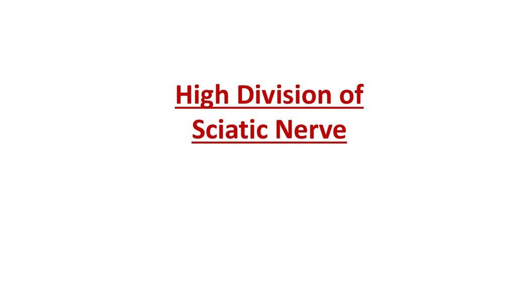 High Division of Sciatic Nerve