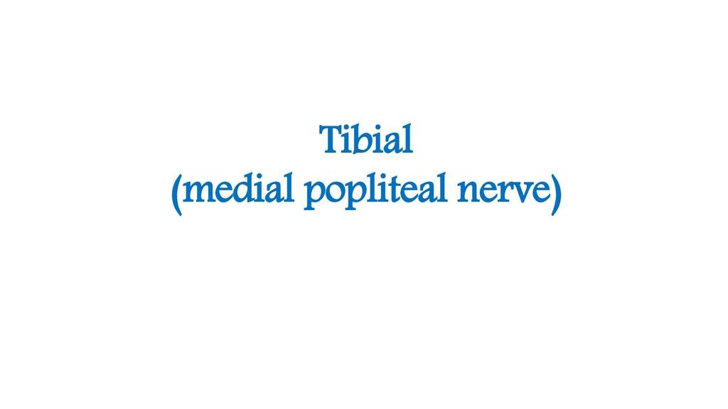 Tibial (medial popliteal nerve)