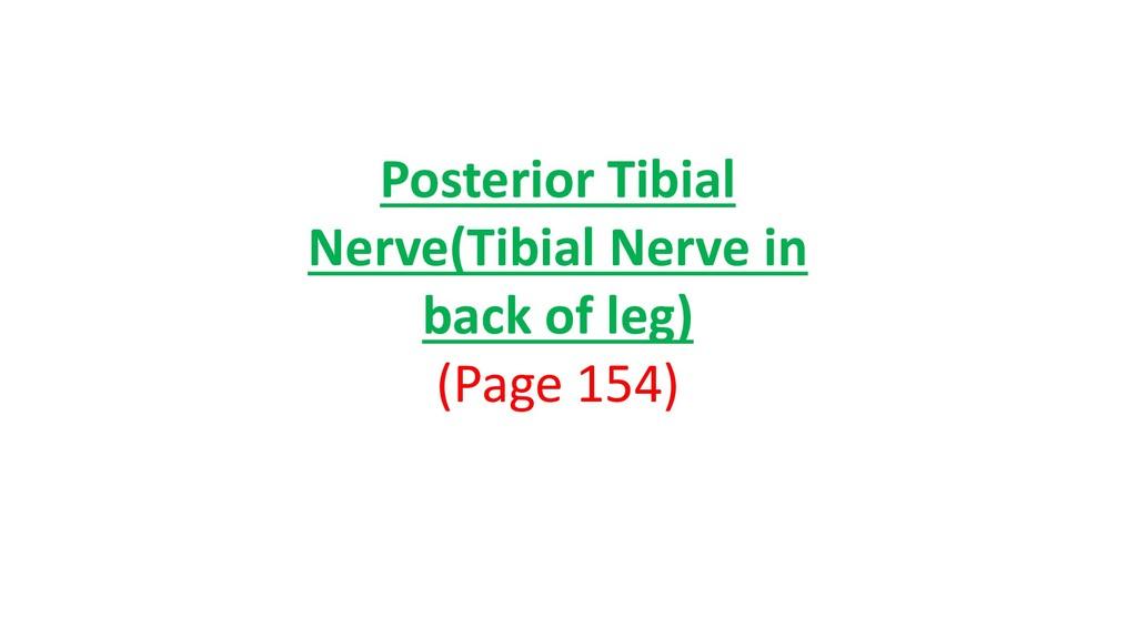 Posterior Tibial Nerve(Tibial Nerve in back of ...
