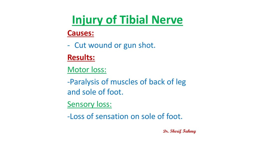 Injury of Tibial Nerve Causes: - Cut wound or g...