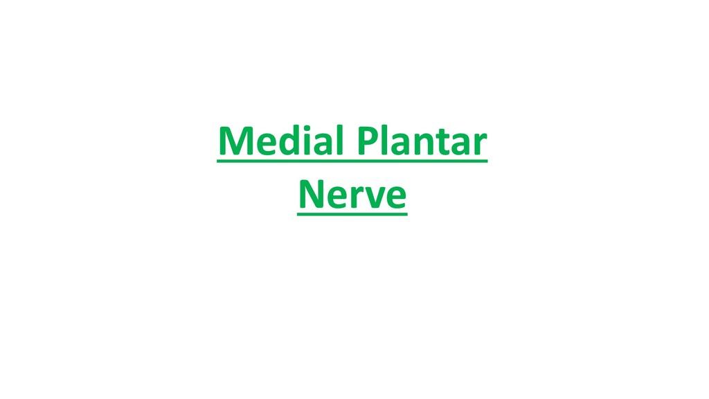 Medial Plantar Nerve