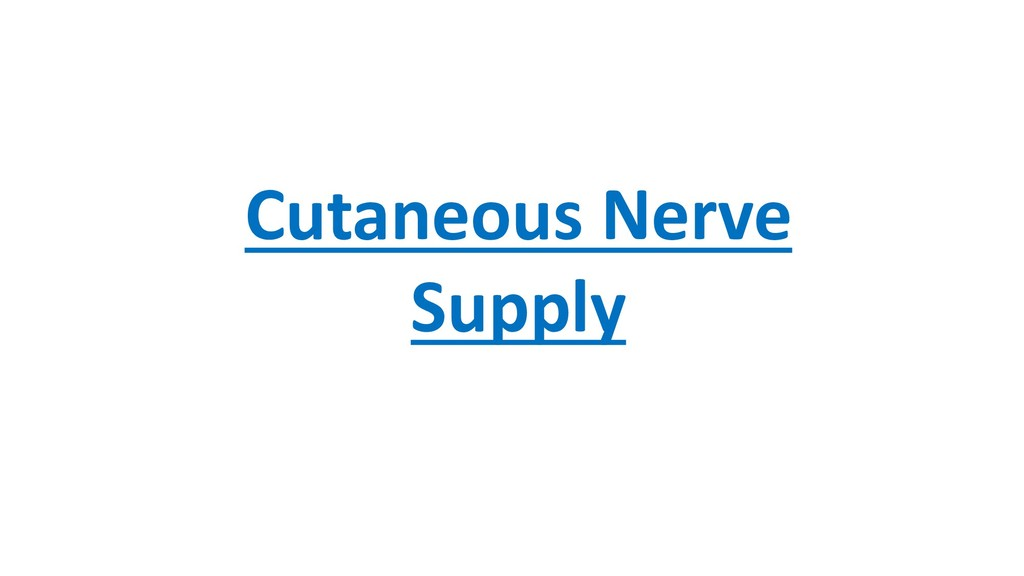 Cutaneous Nerve Supply