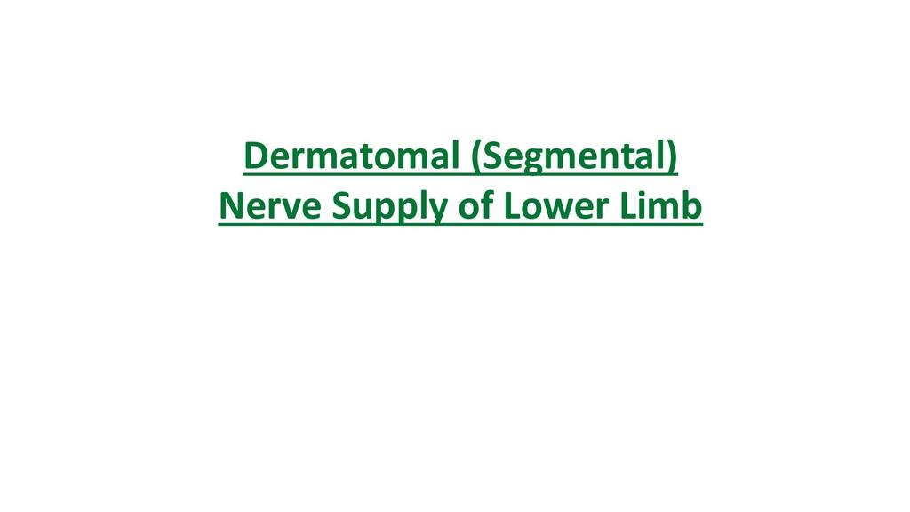 Dermatomal (Segmental) Nerve Supply of Lower Li...