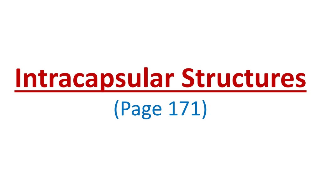 Intracapsular Structures (Page 171)
