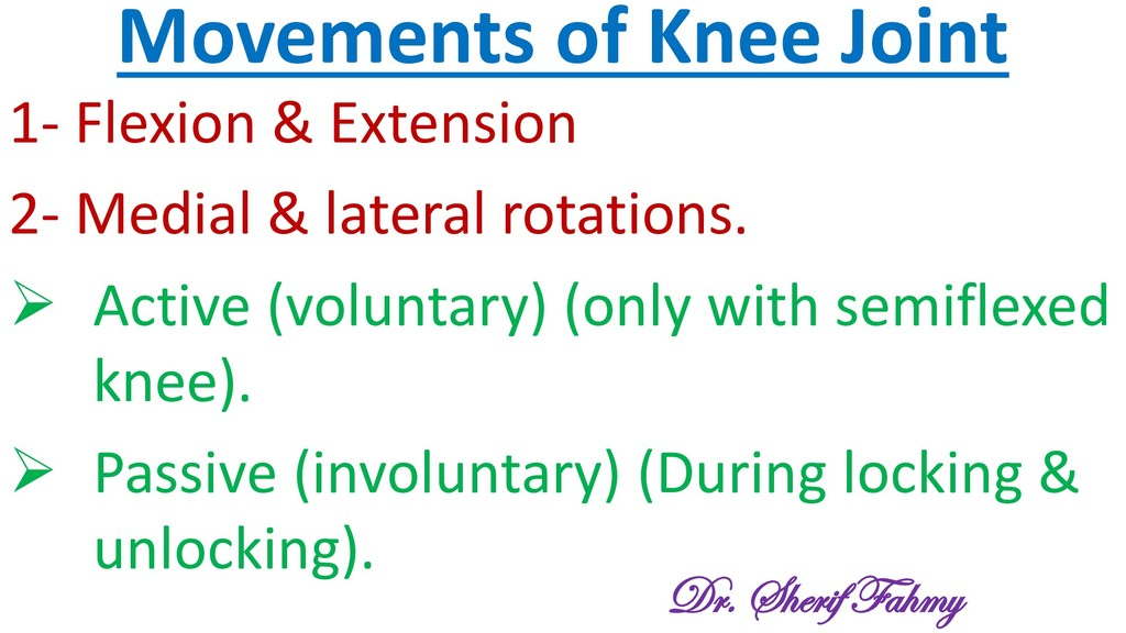 Movements of Knee Joint 1- Flexion & Extension ...