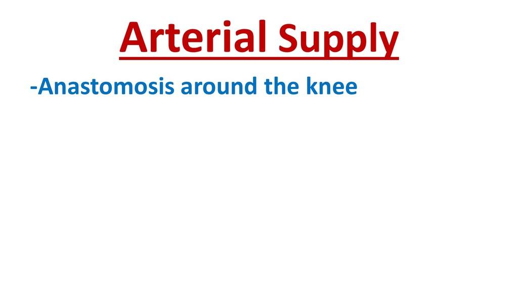 Arterial Supply -Anastomosis around the knee