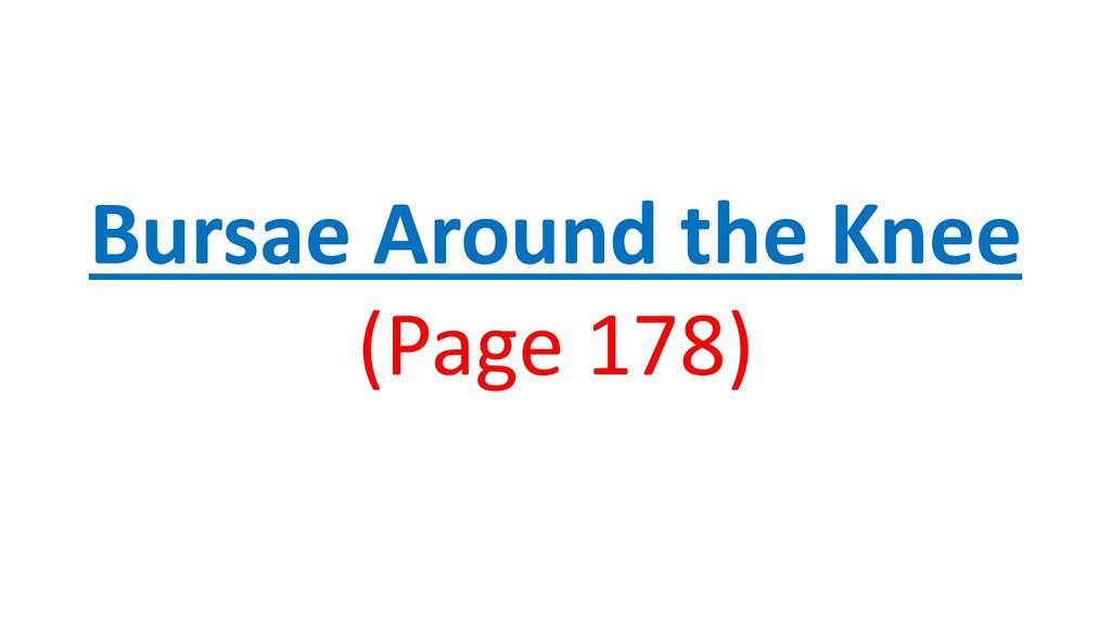 Bursae Around the Knee (Page 178)
