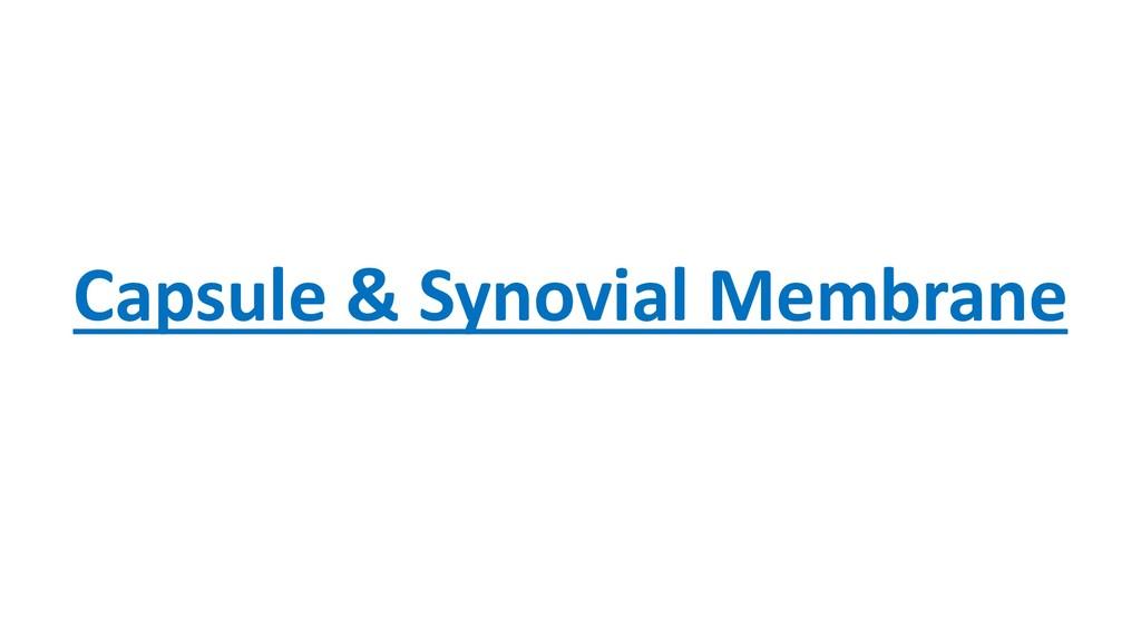 Capsule & Synovial Membrane