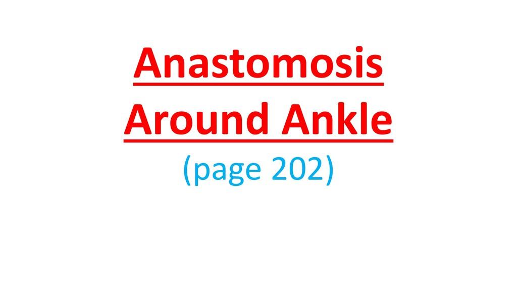 Anastomosis Around Ankle (page 202)