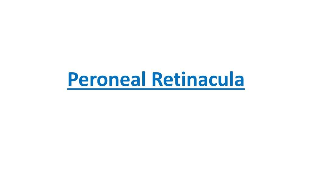 Peroneal Retinacula