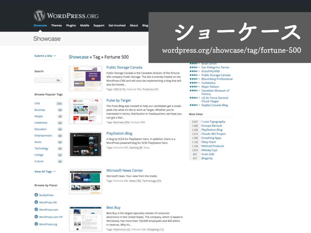 γϣʔέʔε wordpress.org/showcase/tag/fortune-500