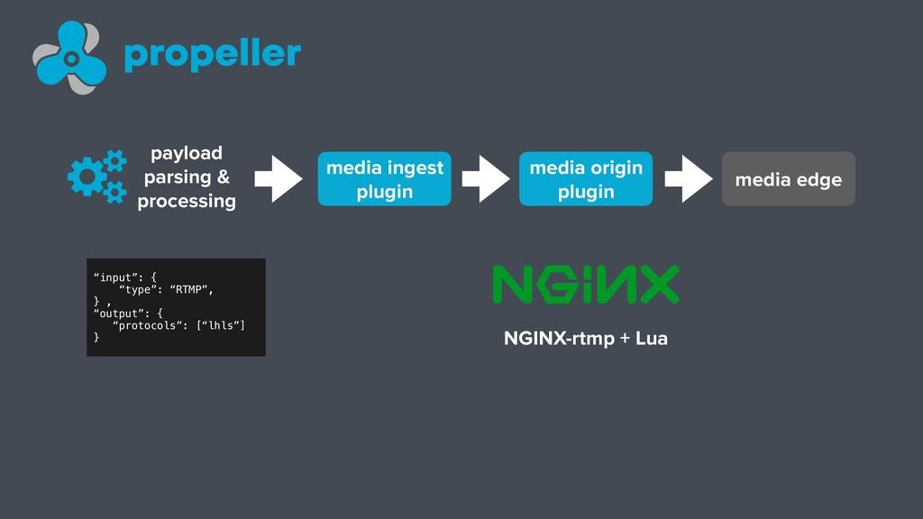 payload parsing & processing media ingest plugi...