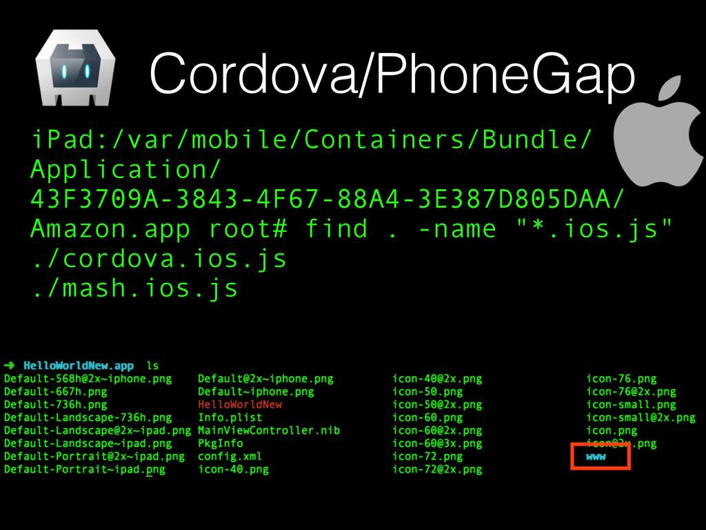 Cordova/PhoneGap iPad:/var/mobile/Containers/Bu...