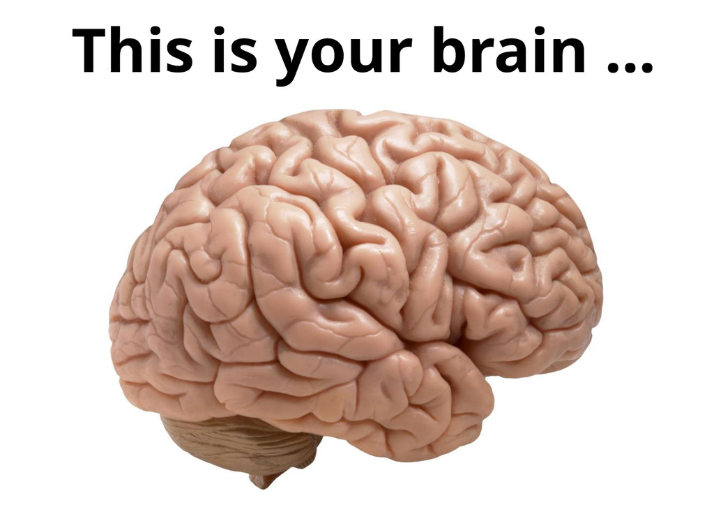 This is your brain …