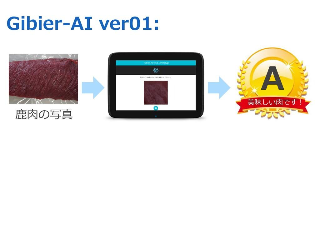 Gibier-AI ver01: ⿅⾁の写真 美味しい⾁です︕ A