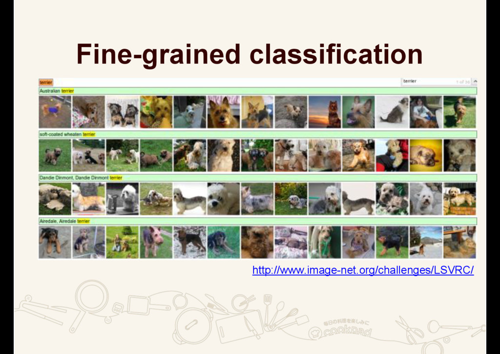 Fine-grained classification KWWSZZZLPDJHQH...