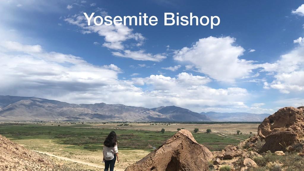 Yosemite Bishop