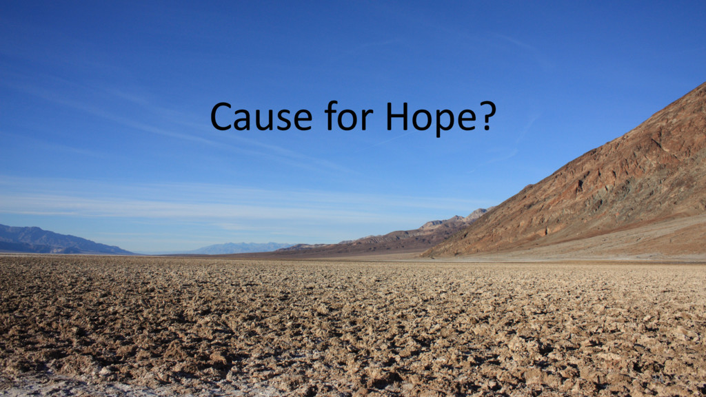 Cause for Hope? 34
