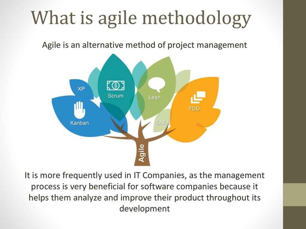 What is agile methodology Agile is an alternati...