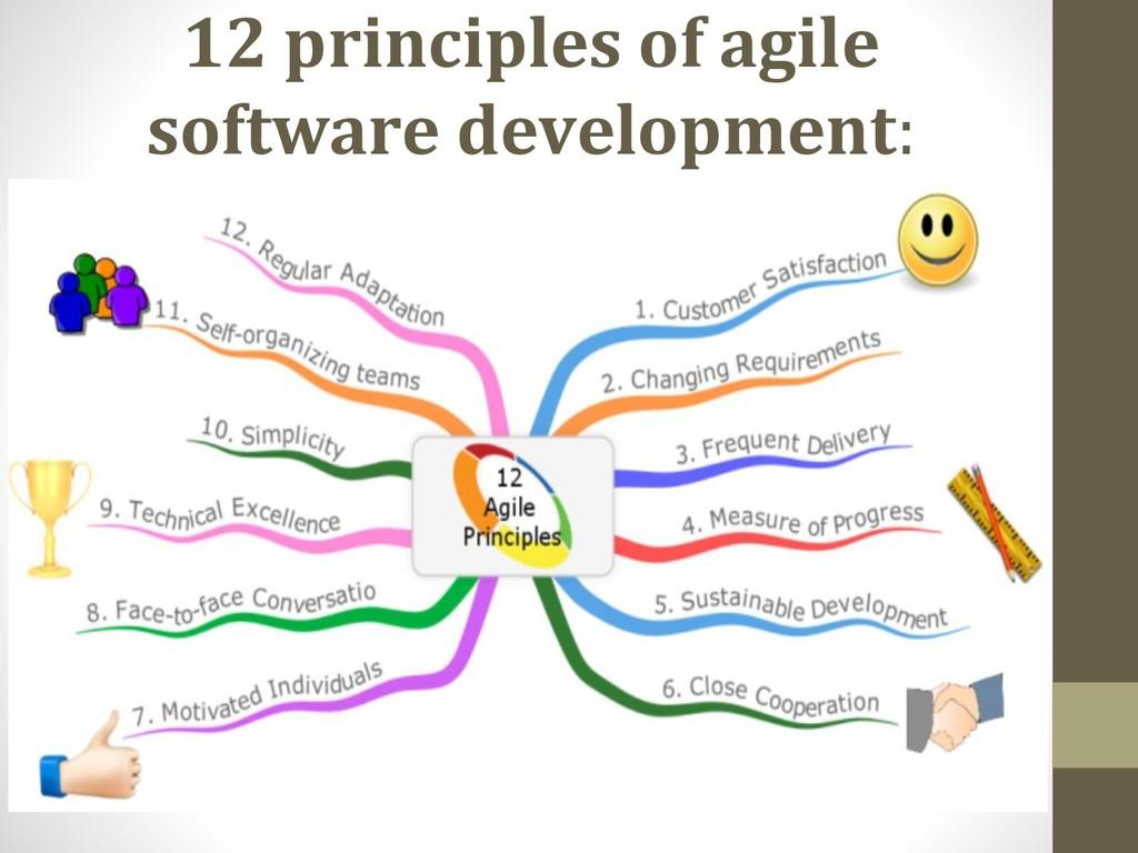 12 principles of agile software development: