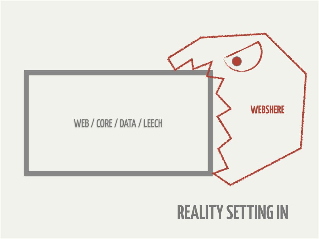 WEB / CORE / DATA / LEECH WEBSHERE REALITY SETT...