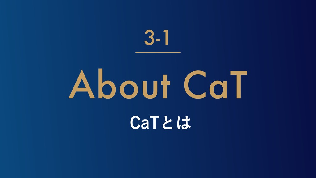 $B5ͱ About CaT 3-1