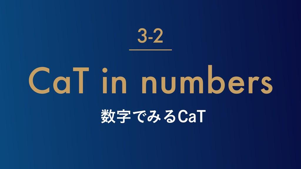ͰΈΔ$B5 CaT in numbers 3-2