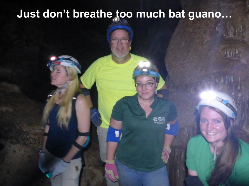 Just don't breathe too much bat guano…