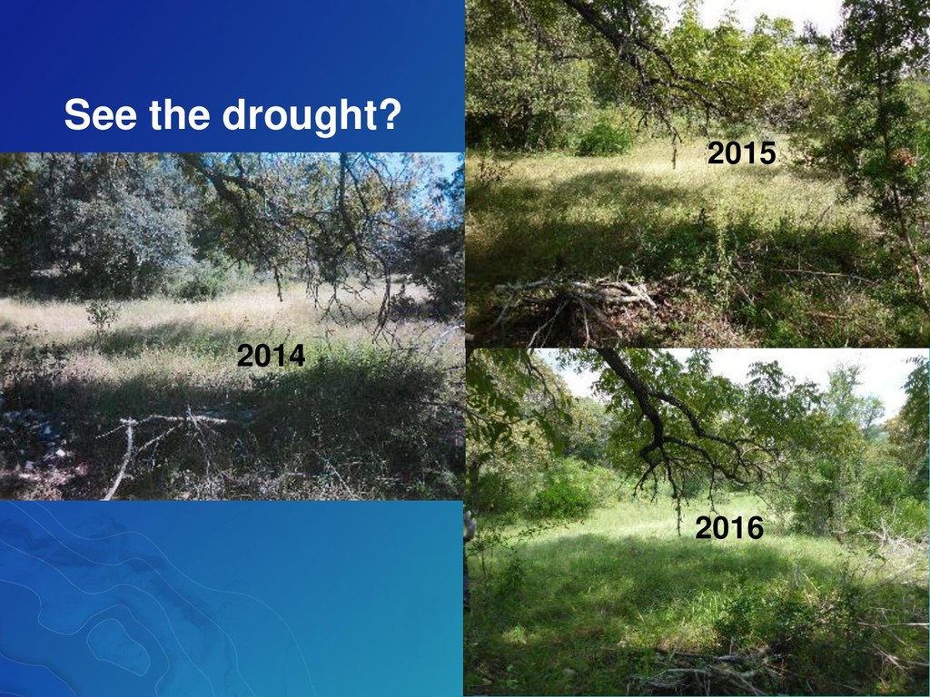 2014 2015 2016 See the drought?