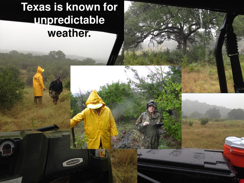 Texas is known for unpredictable weather.