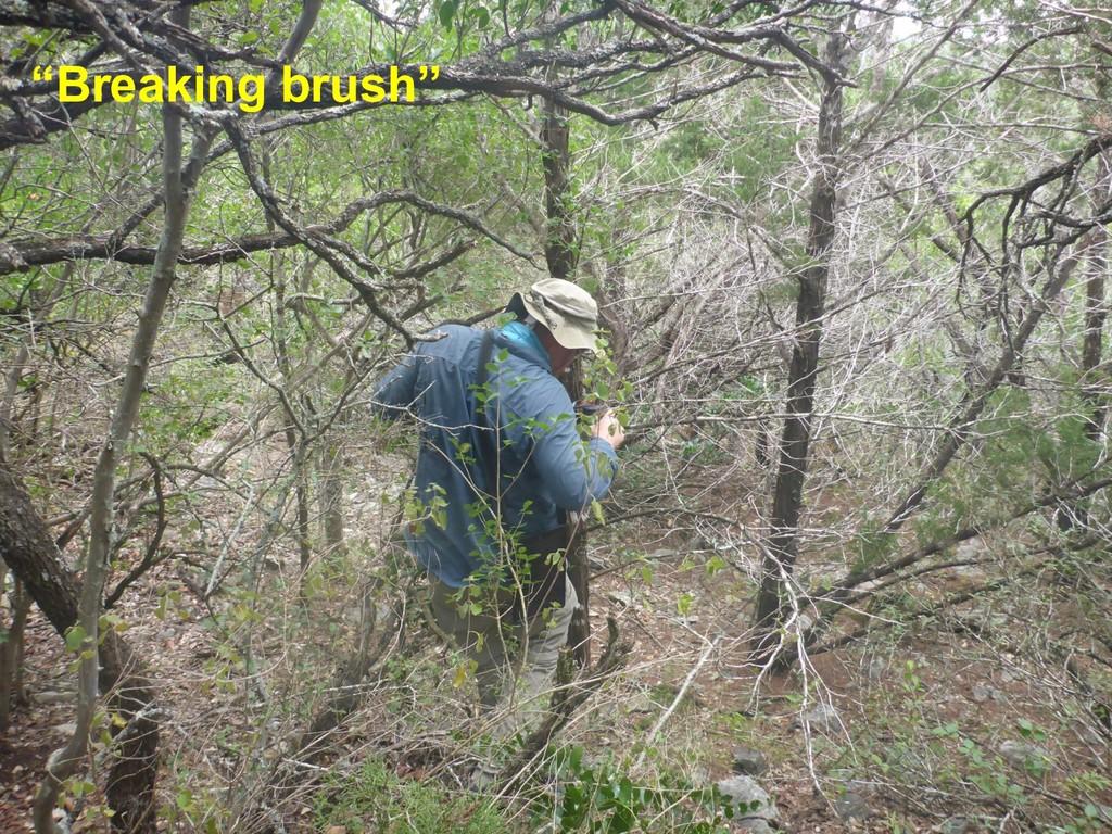 """""""Breaking brush"""""""
