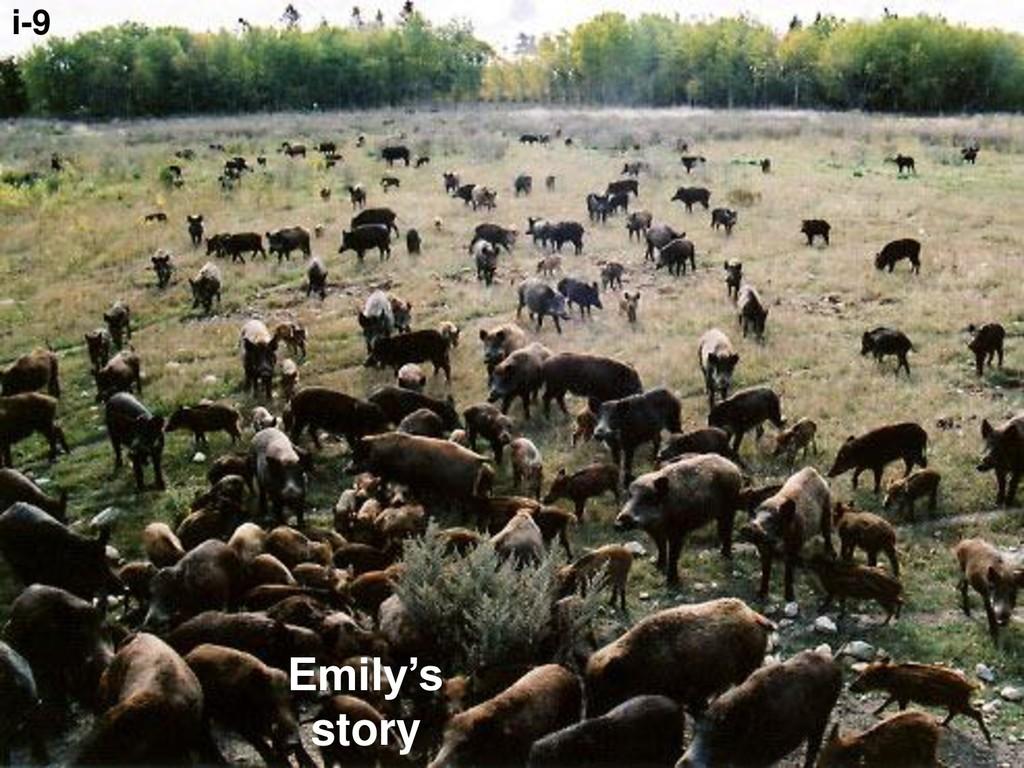 Emily's story i-9