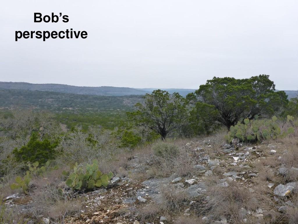 Bob's perspective