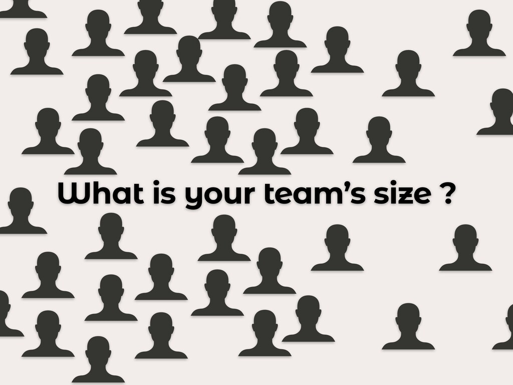 What is your team's size ?