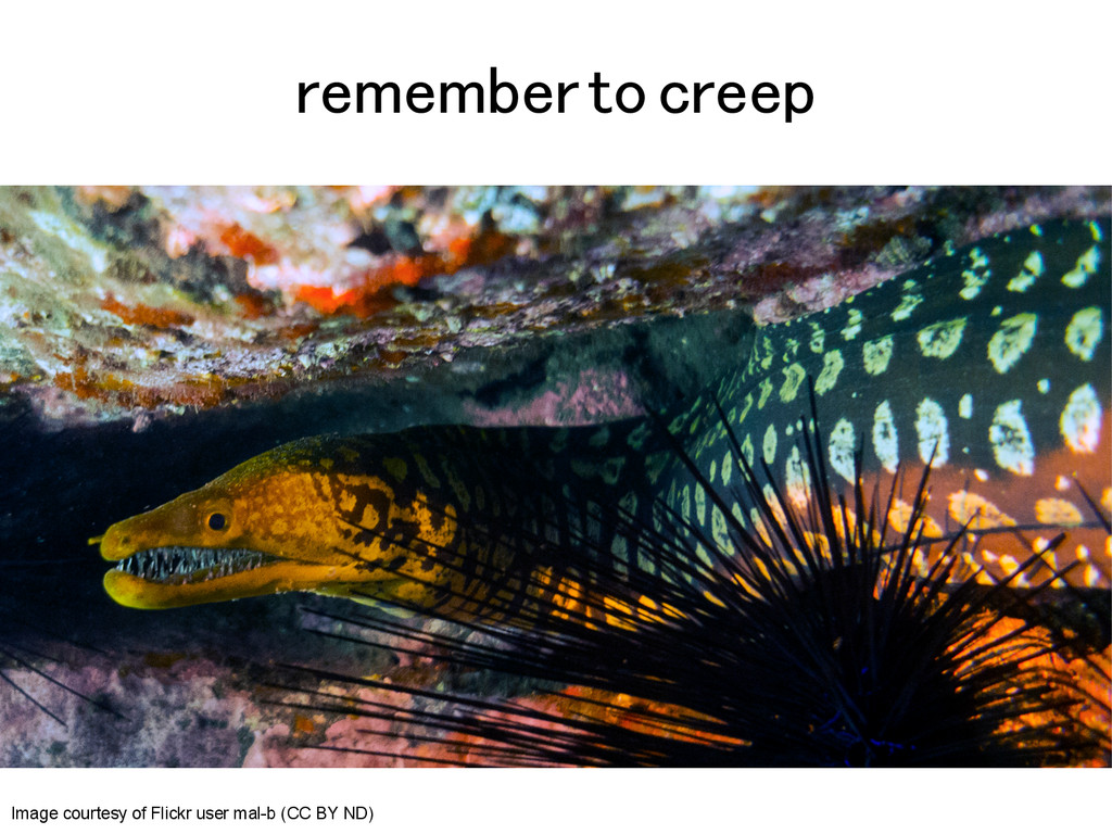 remember to creep! Image courtesy of Flickr use...