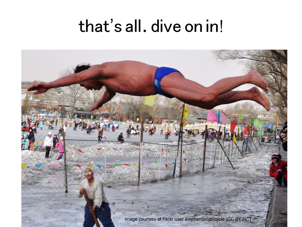 that's all. dive on in! Image courtesy of Flick...