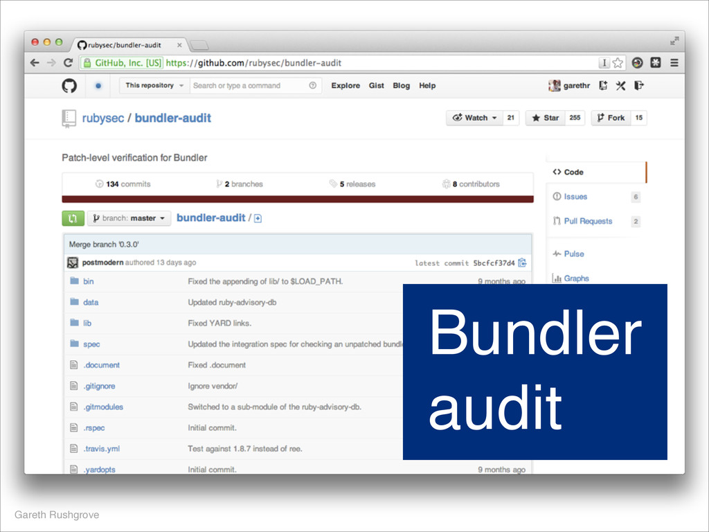 Gareth Rushgrove Bundler audit