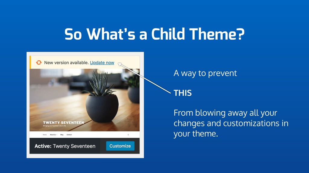 So What's a Child Theme? A way to prevent THIS ...