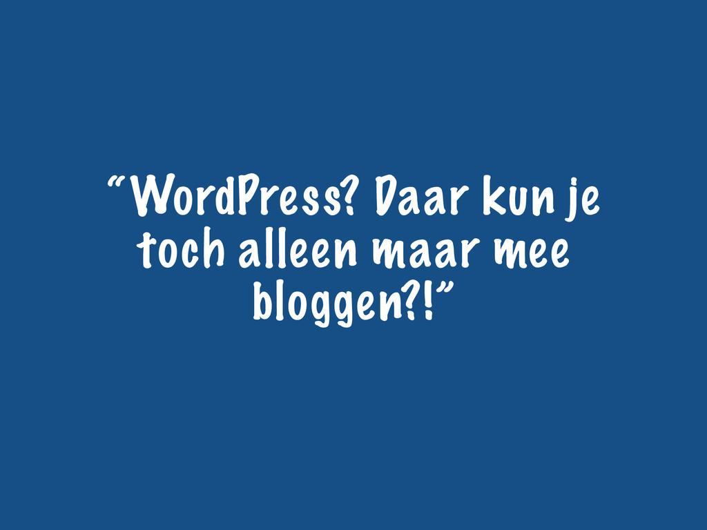 """""""WordPress? Daar kun je toch alleen maar mee bl..."""