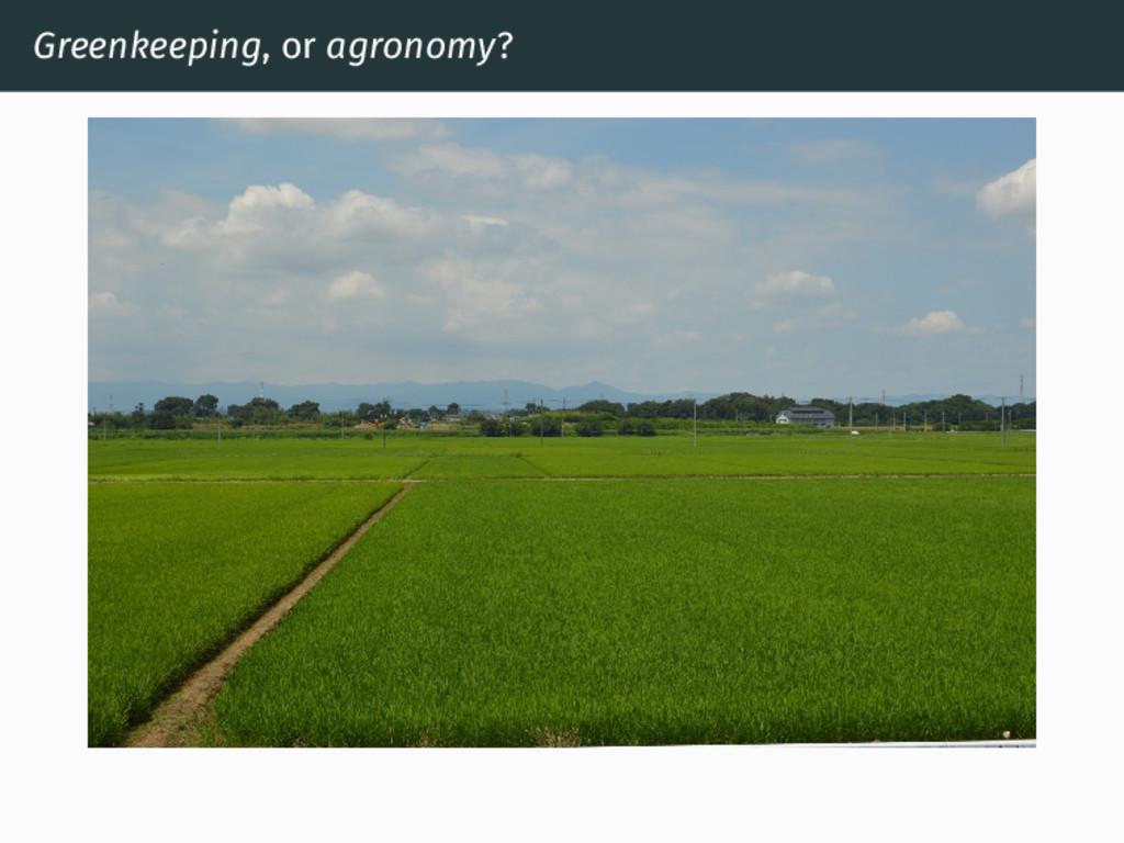 Greenkeeping, or agronomy?