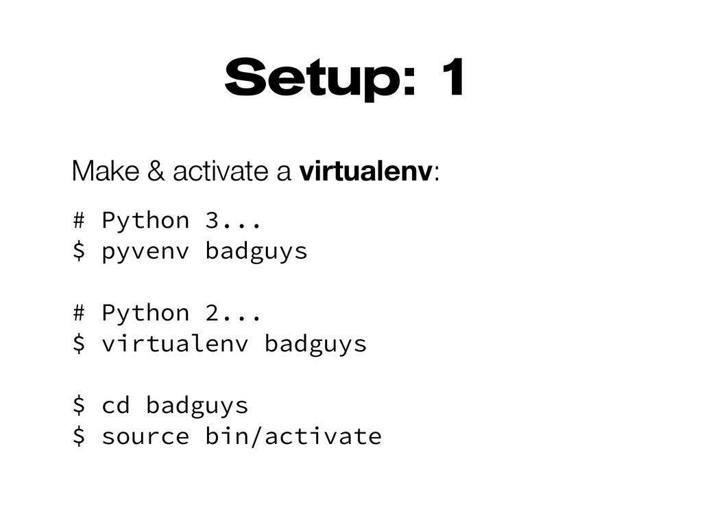 Setup: 1 Make & activate a virtualenv: # Python...