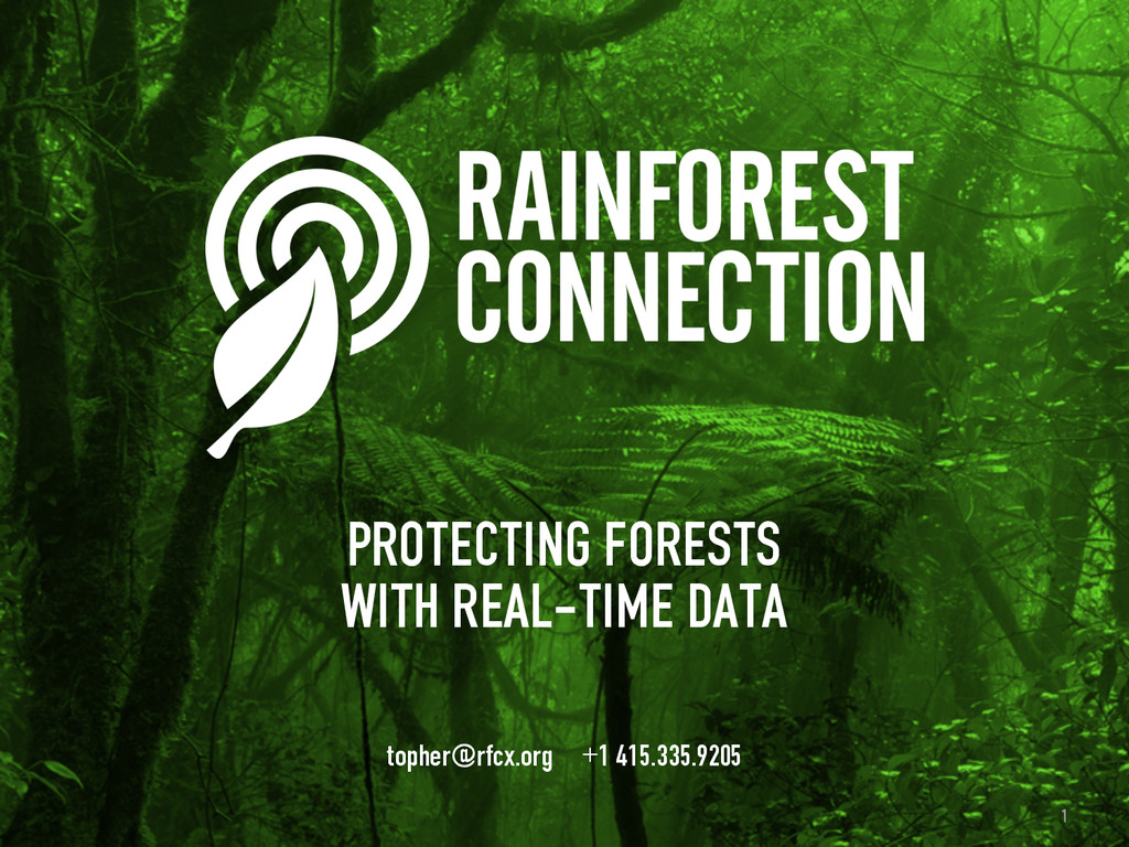 1 1 PROTECTING FORESTS