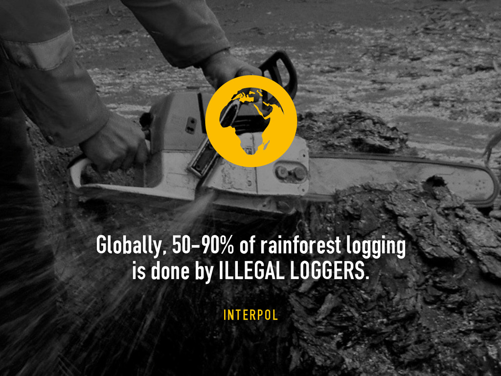 2 Globally, 50-90% of rainforest logging 